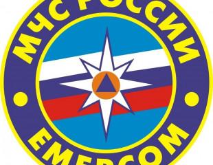 Министерство по чрезвычайным ситуациям (МЧС) РФ подготовила рекомендации о правильной организации функционирования органов повседневного управления РСЧС